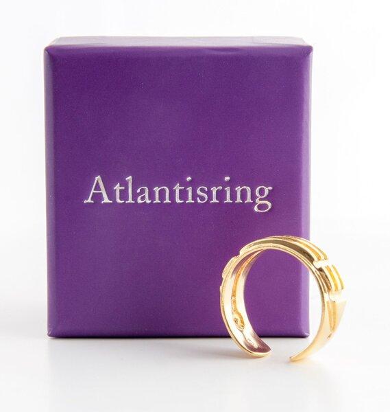 Atlantisring_Damengroesse_vergoldet_BerkR-002-G